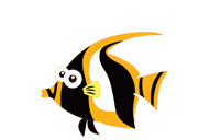 Angelfish-WEB